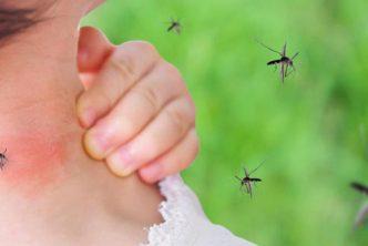 come-proteggersi-punture-zanzara-consigli-soluzioni-fai-da-te