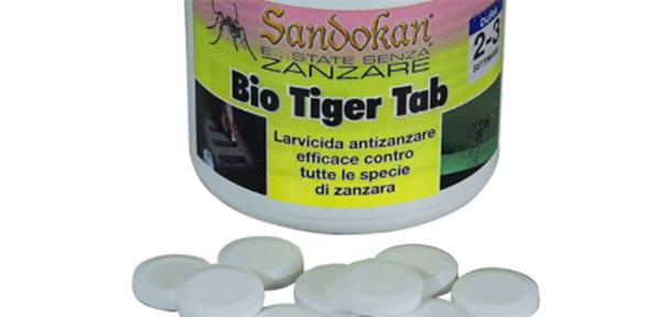 Zanzara Tigre Evitare Puntura Prevenzione Disinfestazioni